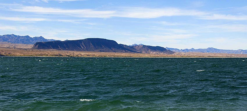 The desert independent for Lake mohave fishing report